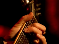 25012012_concerts_bleulezard-13