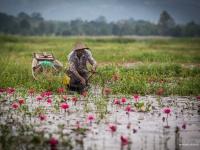 birmanie2013_vincentbailly_web-30