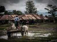 birmanie2013_vincentbailly_web-33