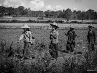 birmanie2013_vincentbailly_web-51