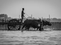 birmanie2013_vincentbailly_web-70