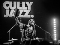 cjf2014_codychesnutt_vincentbailly_web-17