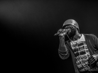 cjf2014_codychesnutt_vincentbailly_web-3