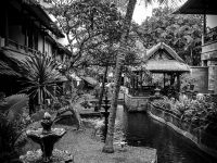 indonesie_2011_paysages-13