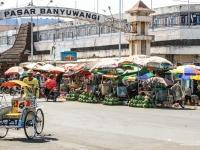 indonesie_2011_population-40