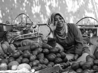 indonesie_2011_population-44