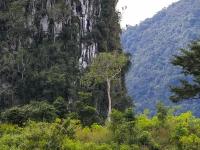 laos_2012_landscapes-20