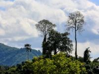 laos_2012_landscapes-25