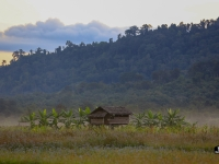 laos_2012_landscapes-40
