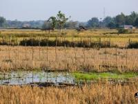 laos_2012_landscapes-62
