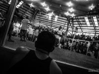 philippines2013_combats_de_coq-32
