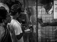 philippines2013_combats_de_coq-68