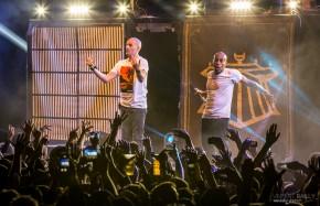 Caribana Festival 2014 / IAM